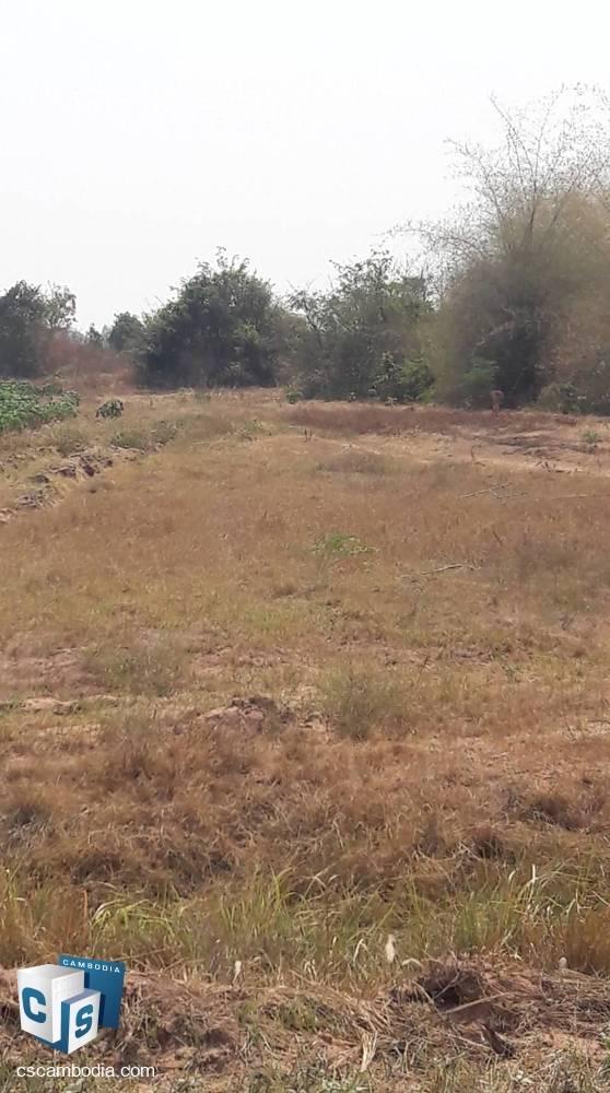 100,000 Sq m Land – For Sale – Poi Pet City