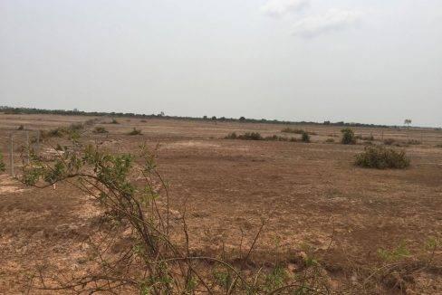 18000sq m-Land-sale-Siem reap 90$ (4)