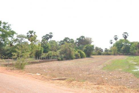 Land For Sale in Siem Reap 60$ (6)
