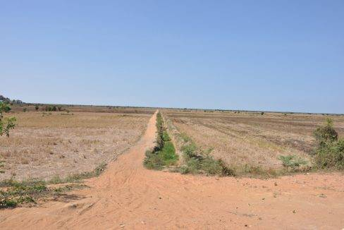 land sale-$10 -300000 m2-siem reap (2)