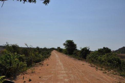 land sale-$10 -300000 m2-siem reap (3)