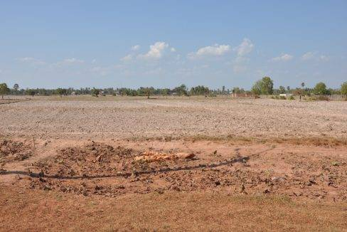 land sale -11000m2 150$-siem reap (6)