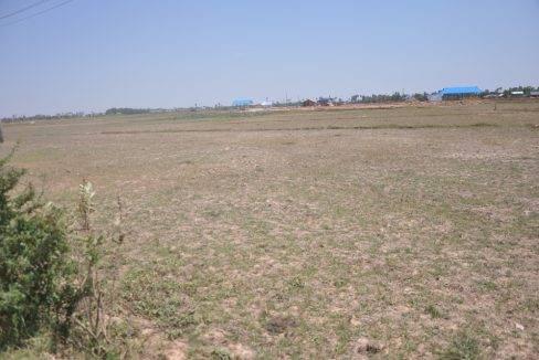 land sale -15377sqm -60