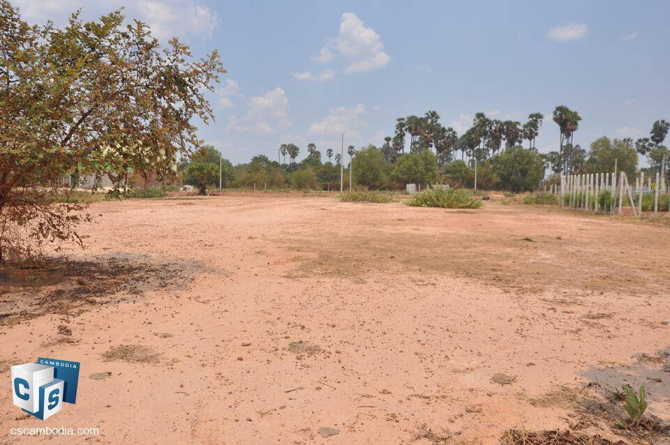 Land for sale – Trang Village – Sangkat Sla Kram Commune – siem reap