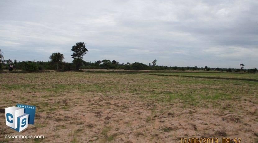 50,000 sq m Land - For Sale - Pouk, Siem Reap (1)