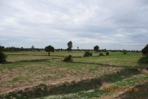 50,000 sq m Land - For Sale - Pouk, Siem Reap (3)