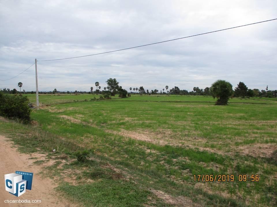 50,000 sq m Land – For Sale – Prolaet Village – Pouk Commune – Siem Reap