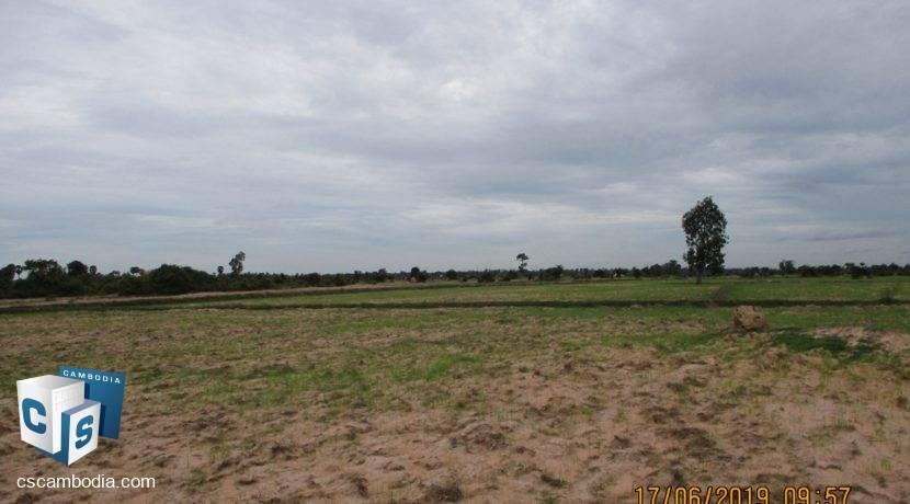 50,000 sq m Land - For Sale - Pouk, Siem Reap (6)