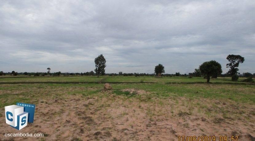 50,000 sq m Land - For Sale - Pouk, Siem Reap (7)