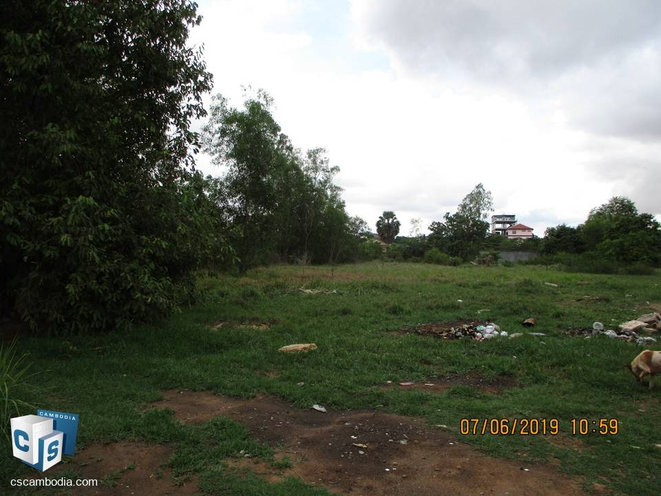 6080 sq m Land – For Sale – Sla Kram Village – Siem Reap