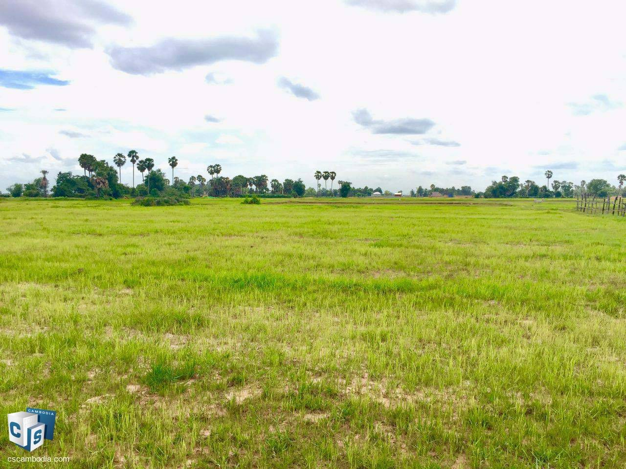 4,683.89 Sq M Land – For Sale – Krobei Real Commune – Siem Reap