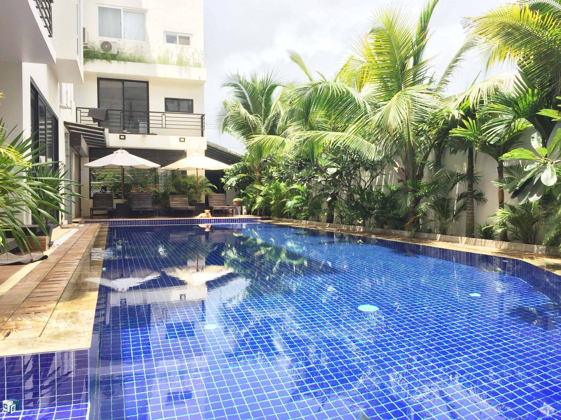 Luxury Studio Apartment with pool – EXCELLENT VALUE!! – For Rent – Kruos Village – Siem Reap