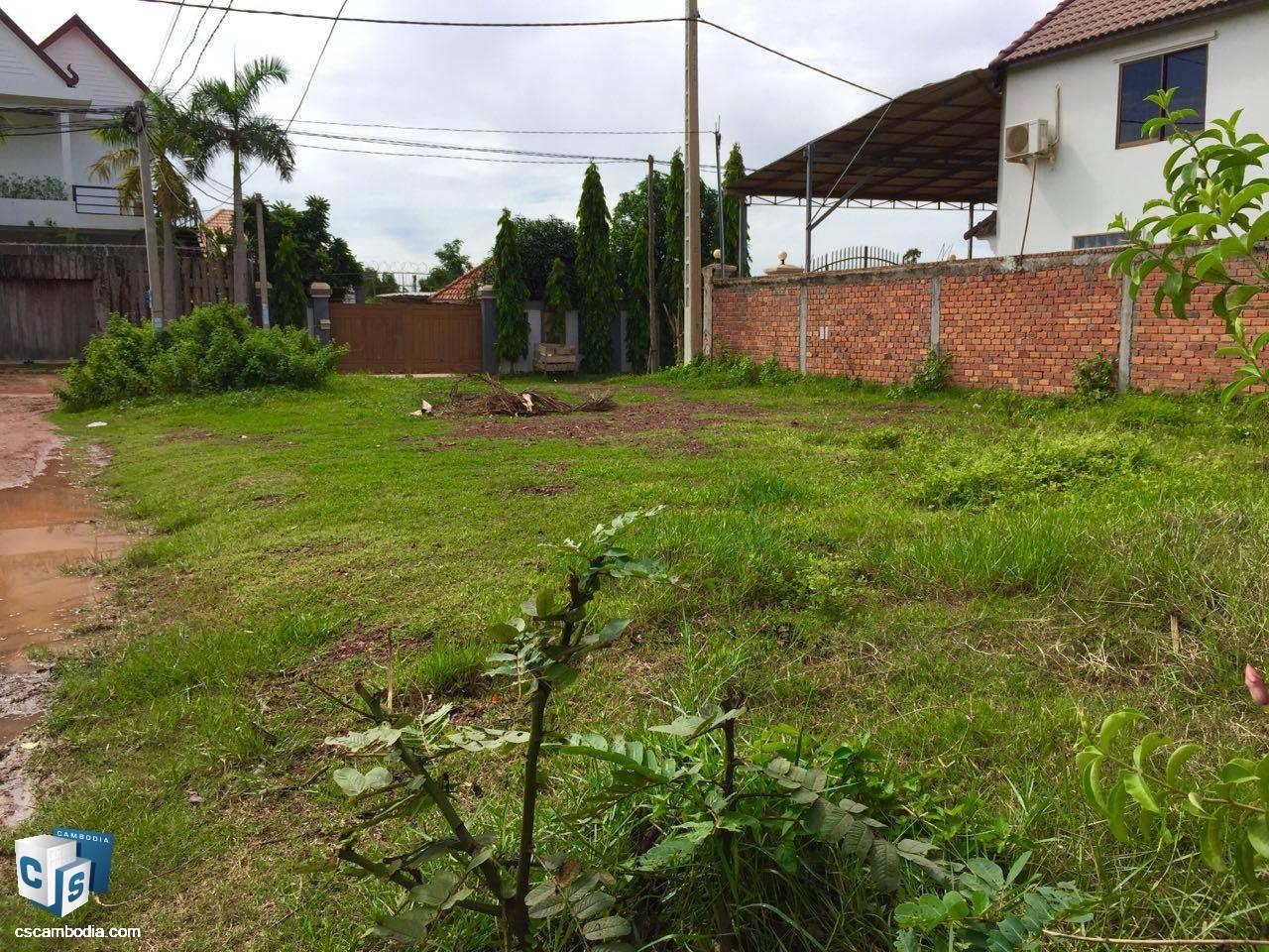 253 Sq meteres Land – For Sale – Taphul Village – Svay Dangkum Commune– Siem Reap