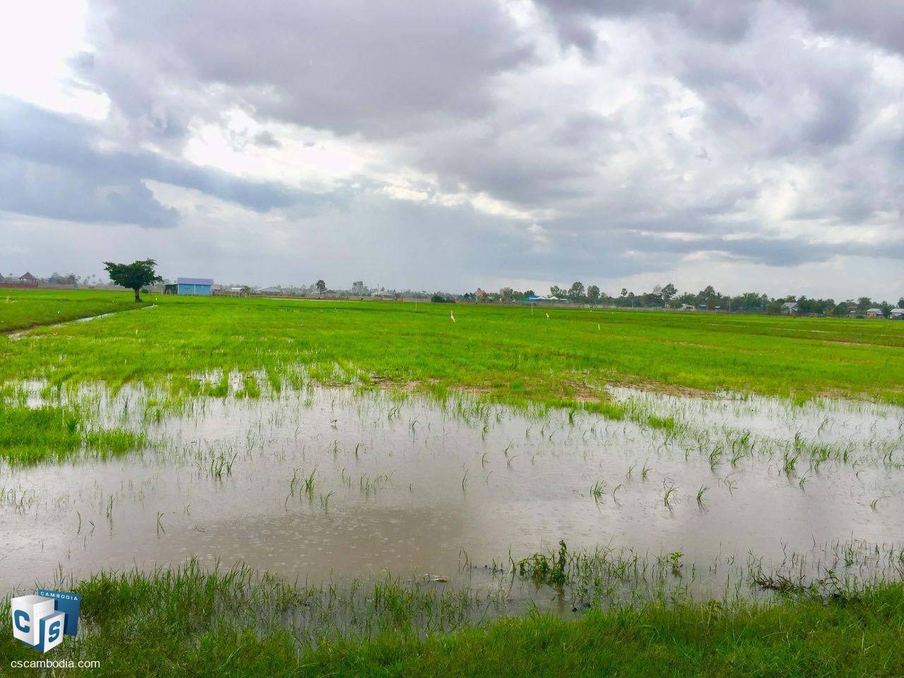 5,213 Sq M Land – For Sale – Prasat Bakong Commune – Siem Reap