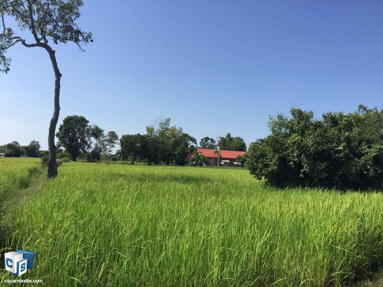 1,500 Sq Meters Of Land – For Sale – Prasat Bakong  Village – Siem Reap