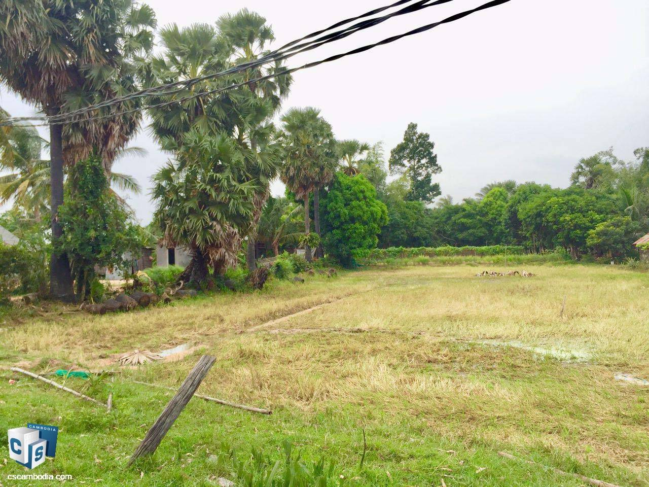 2,800 Sq Meters Of Land – For Sale – Chreav Commune– Siem Reap