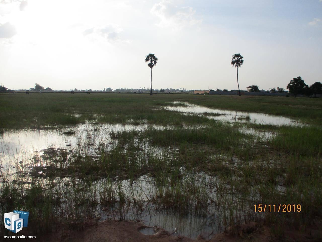 6,643 Sq Meters Of Land – For Sale – Chreav Commune– Siem Reap