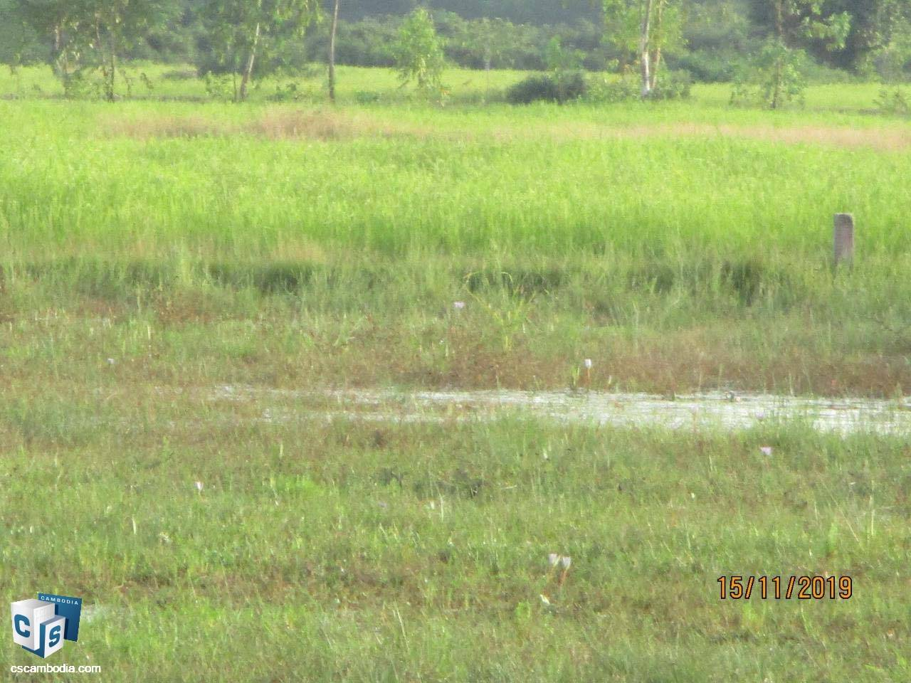 6,407 Sq Meters Of Land – For Sale – Chreav Commune– Siem Reap
