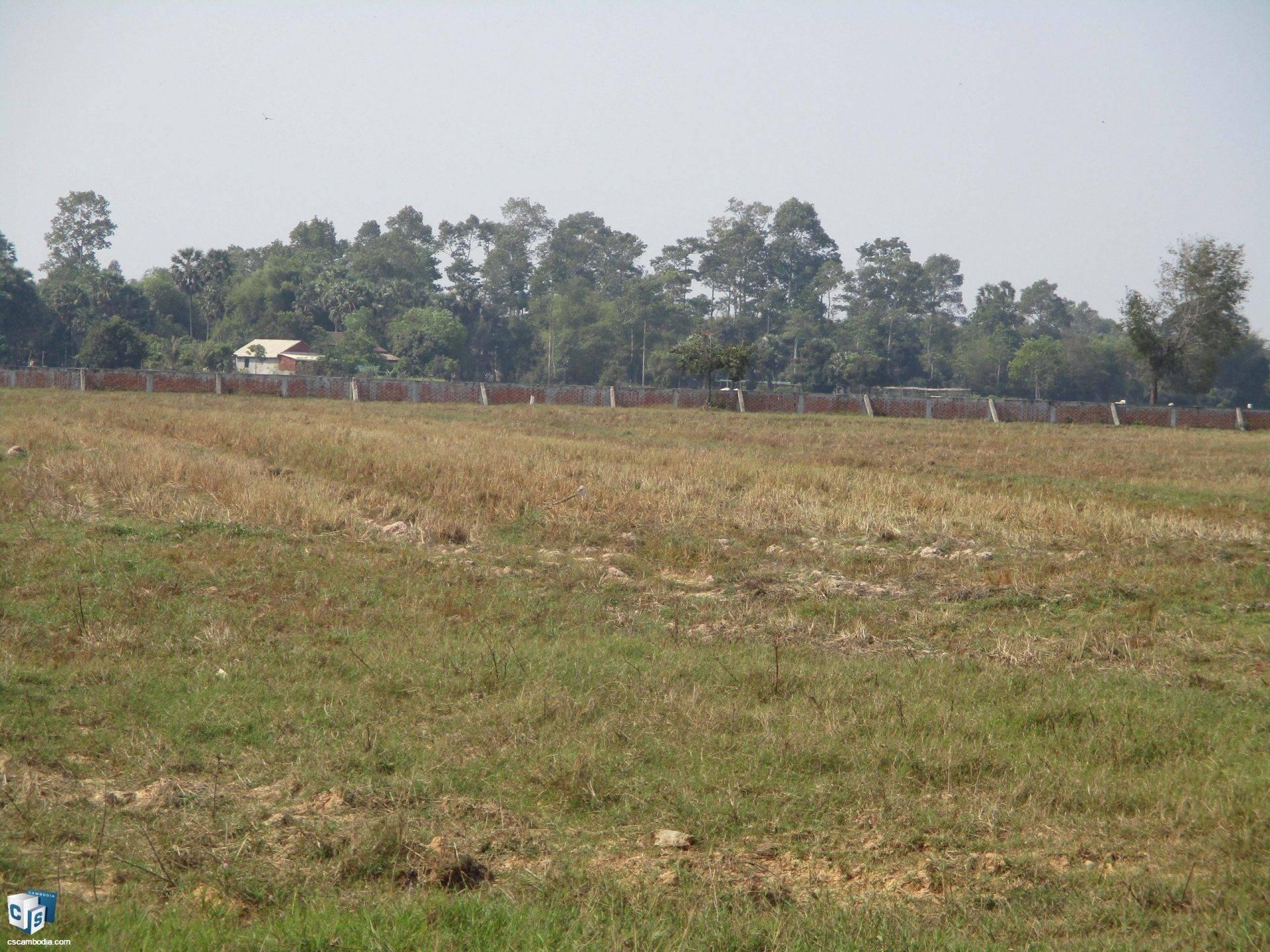28,000 Sq Meters Of Land – For Sale – Prasat Bakong  Village– Siem Reap