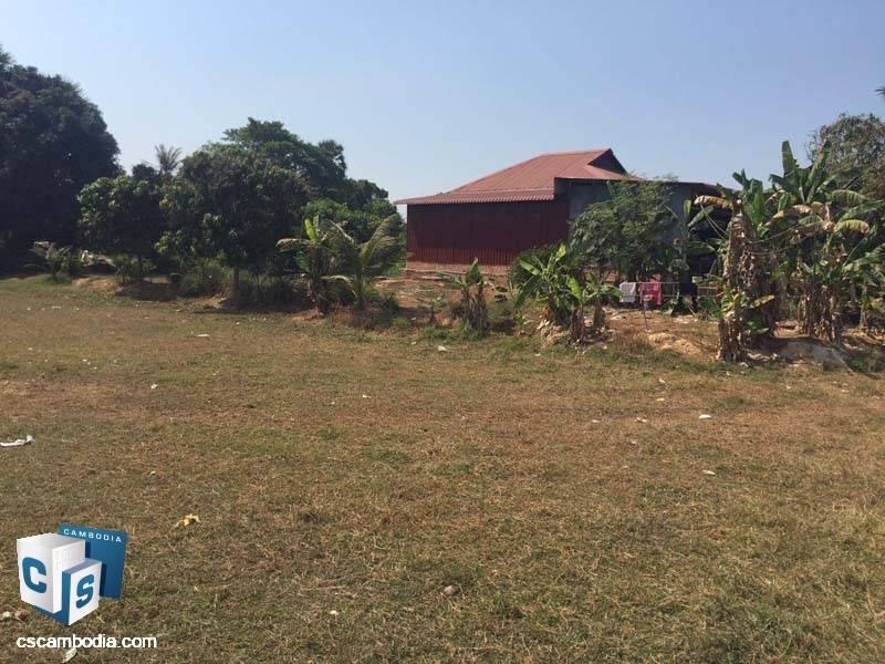 Land For Sale in Braleay-Siem Reap