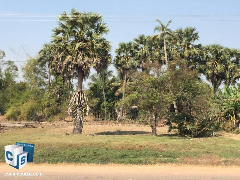 Land For Sale in Prasat Bakong-Siem Reap