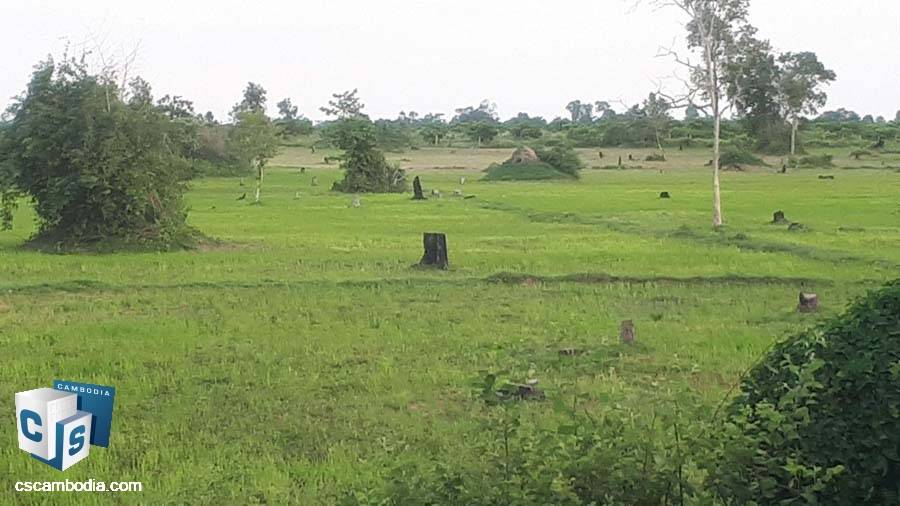 Land For Sale in Beng Mealea-Siem Reap