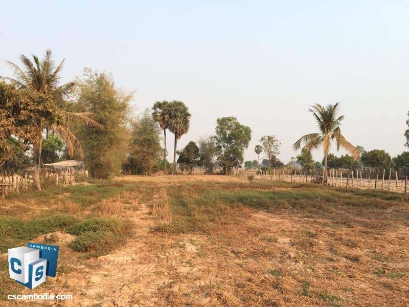 Land For Sale in Damdek-Siem Reap
