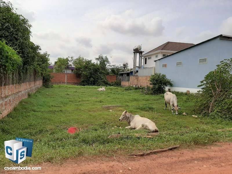 Land For Sale In Chreav – Siem Reap
