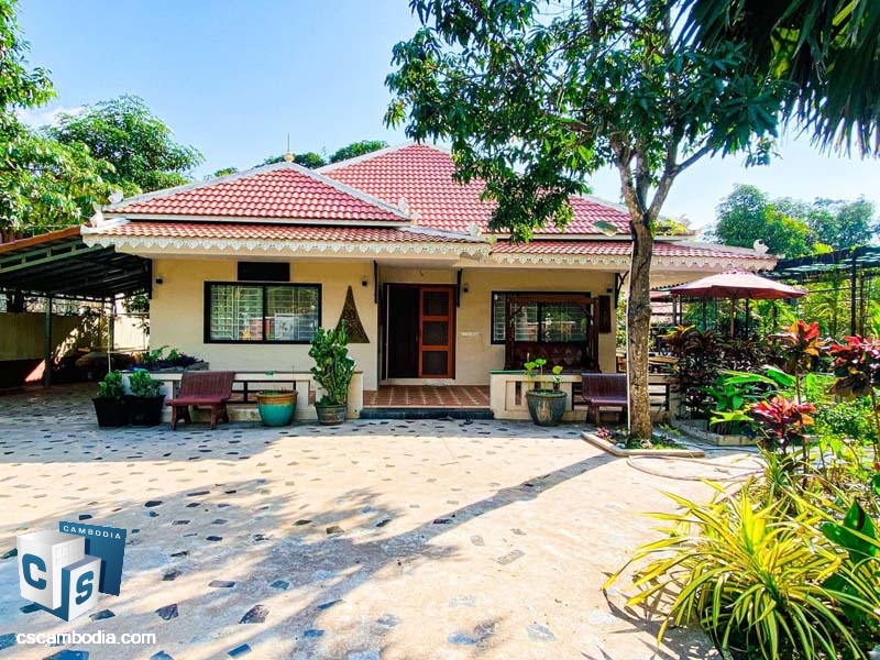 House For Rent In Siem Reap