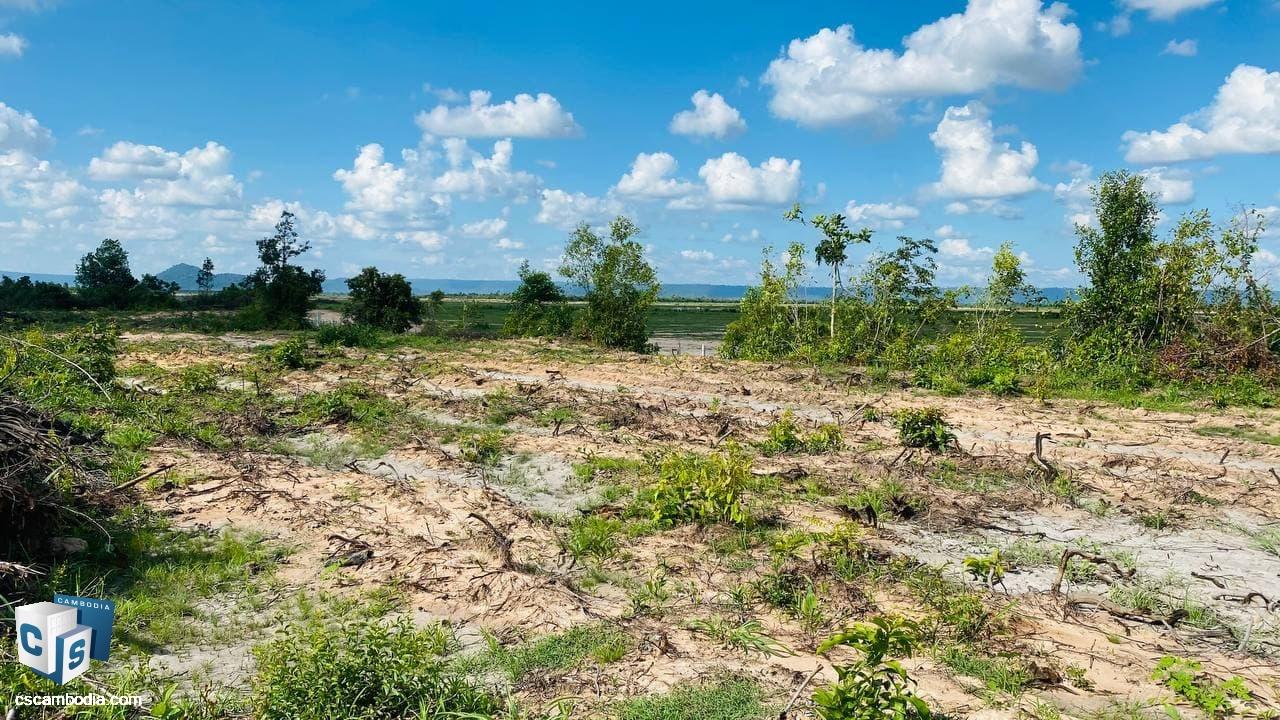 Land For Sale In Bantey Srey-Siem Reap