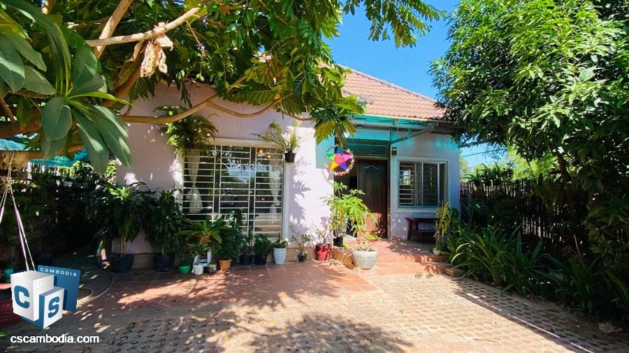 House For Sale and Rent In Chreav-Siem Reap